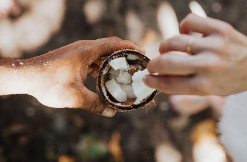 Bazna ulja – temelj aromaterapijskih pripravaka
