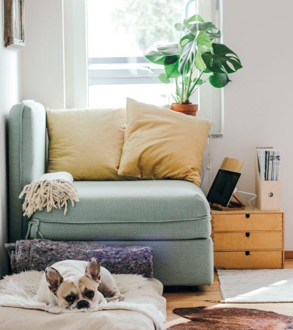 Aromaterapija za čišći dom