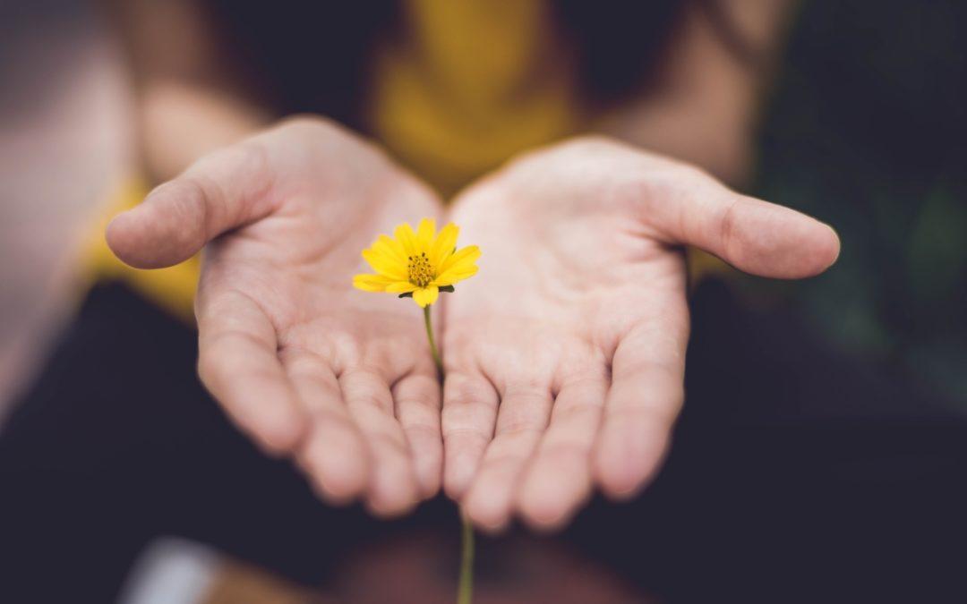 CHAKRA BALANCE – Energetska aromaterapija za unutarnji mir